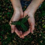 Francisco: Cuidar da natureza para que a natureza cuide da gente